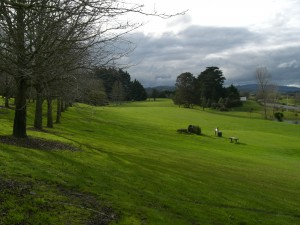 Looking down the 7th fairway